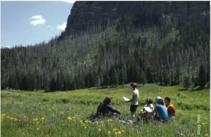 Have you taken a wilderness first aid class?