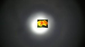 Headlamp Brightness Comparison