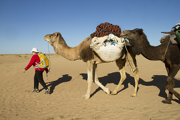 Helen trekking across the Sahara