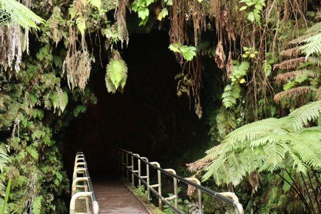 Entrance to Thurston Lava Tube, Hawaii Volcanoes National Park