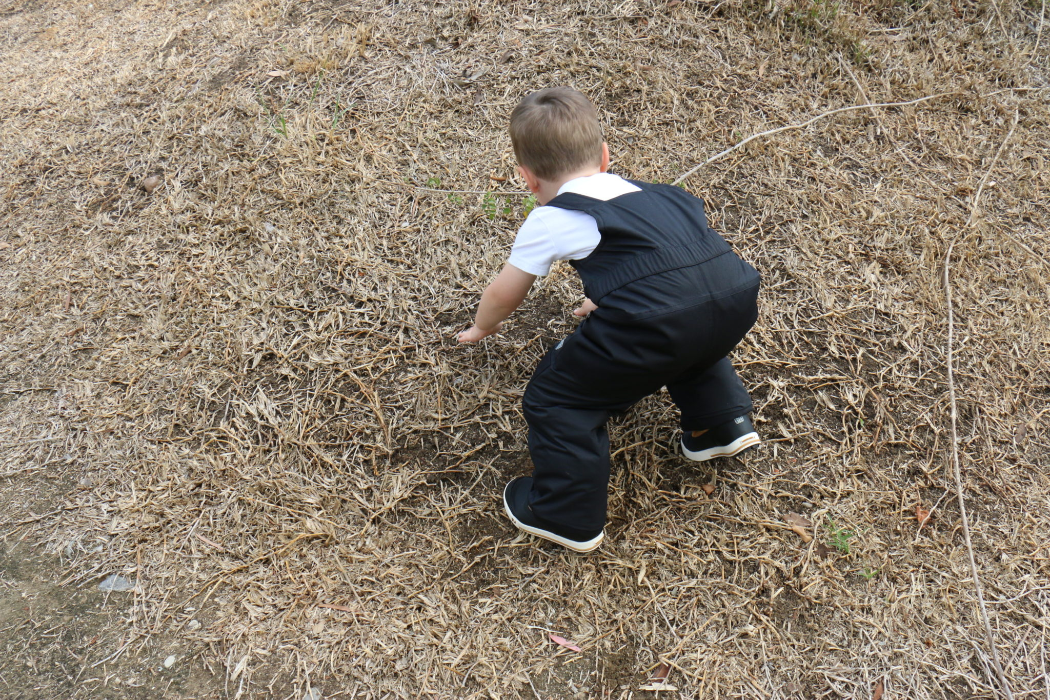 Hiking Toddler staying comfy in his durable REI Co-op Timber Mountain Overalls.