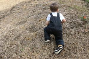 Toddler hiking gear