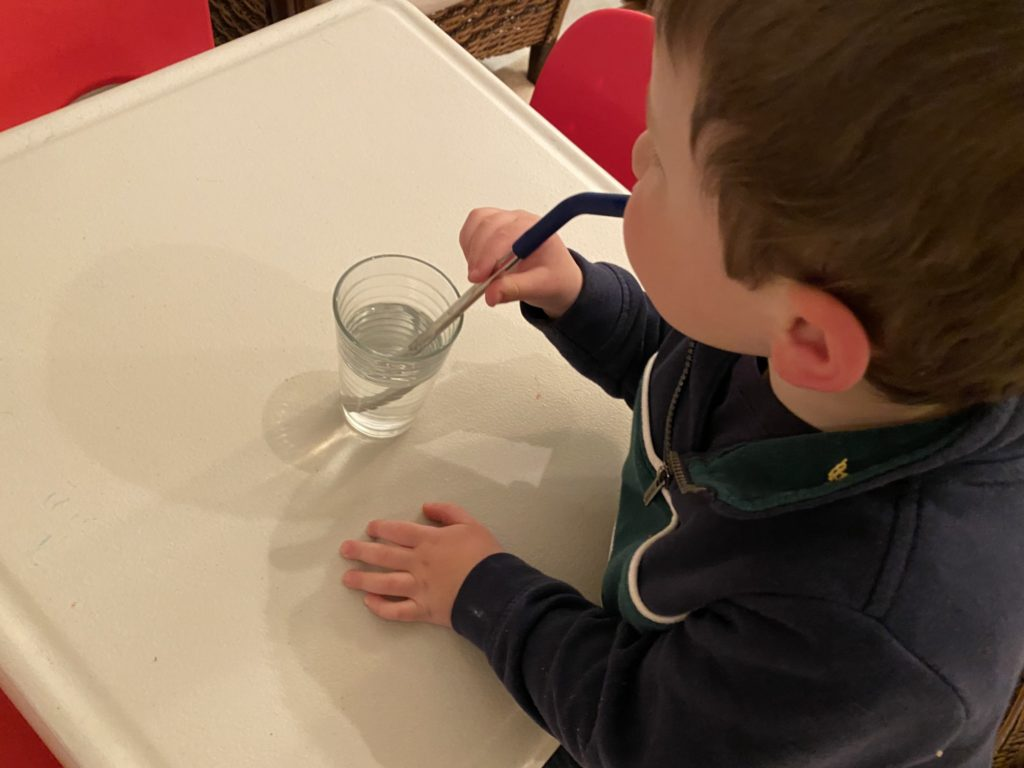 Re-usable stainless steel straws for the children
